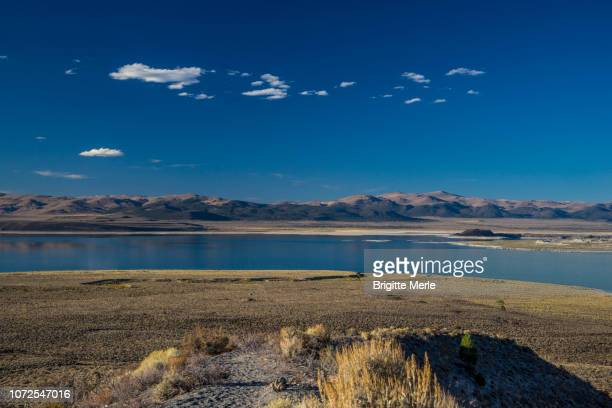 United States, California, Mono Lake at sunset