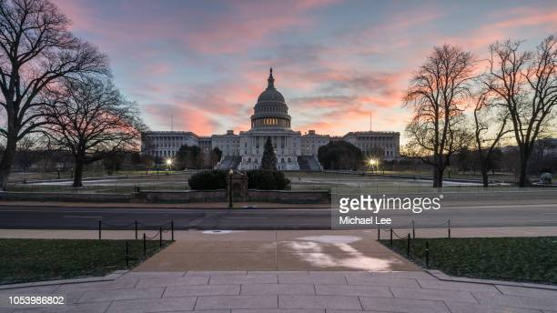 united states capitol building - washington, dc - politics and government stock pictures, royalty-free photos & images