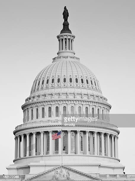 united states capitol dome, black and white with color flag - house of representatives stock pictures, royalty-free photos & images