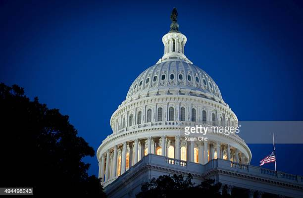 united states capitol dome - xuan che stock pictures, royalty-free photos & images