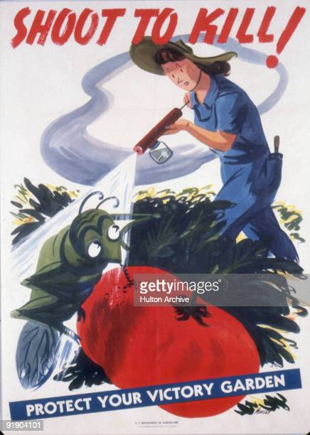 United States Department of Agriculture poster features an illustration of a woman as she sprays a pesticide on an insect that is eating a tomato...