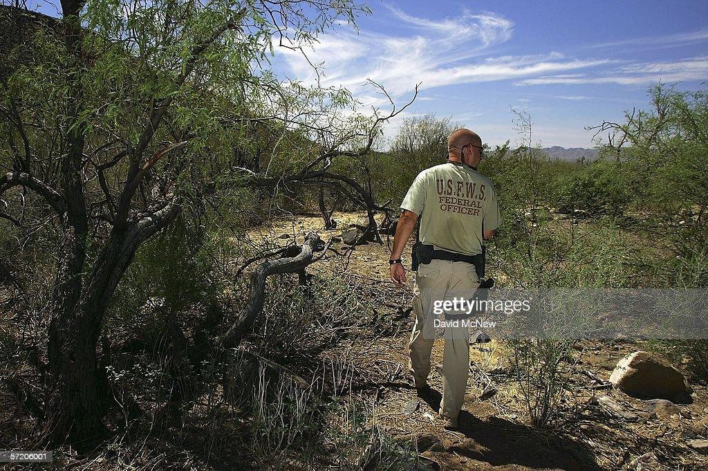 Illegal Immigration Imperils Arizona Wilderness : News Photo