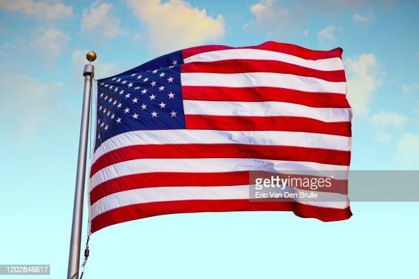 united states flag against blue sky - eric van den brulle stockfoto's en -beelden
