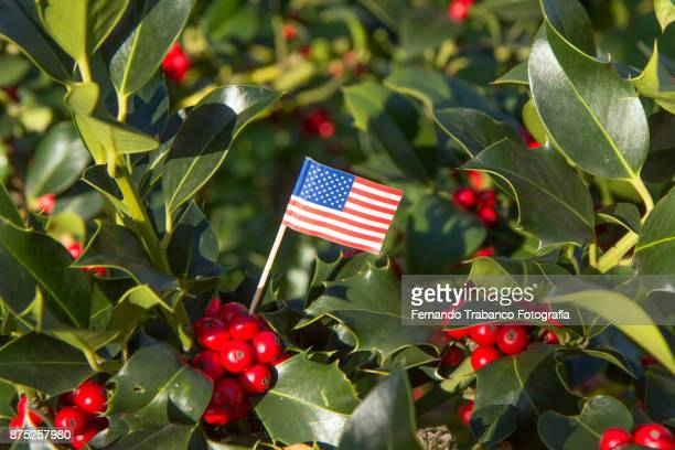united states flag - política e governo imagens e fotografias de stock