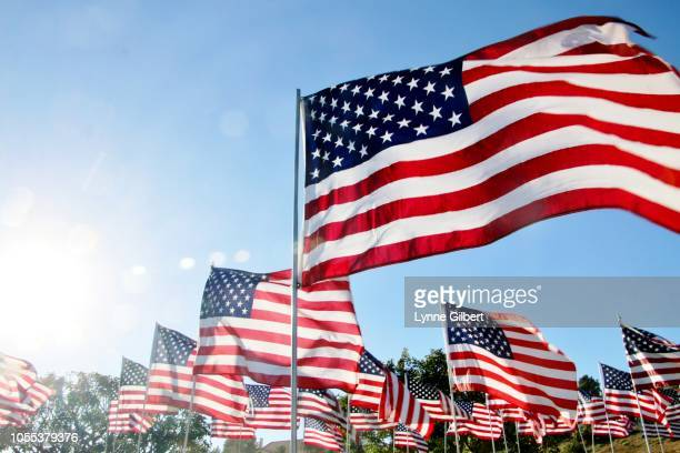 united states flags blow in the wind in malibu, ca - verenigde staten stockfoto's en -beelden
