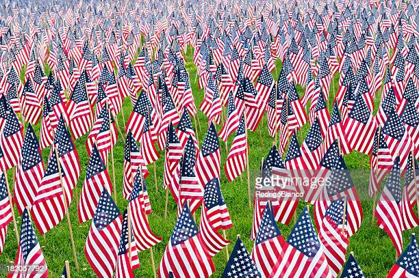 united states flags - memorial day remembrance stock pictures, royalty-free photos & images