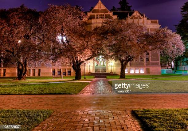Univeristy of Washington at Night