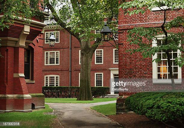 university campus, harvard - ivy league university stock photos and pictures