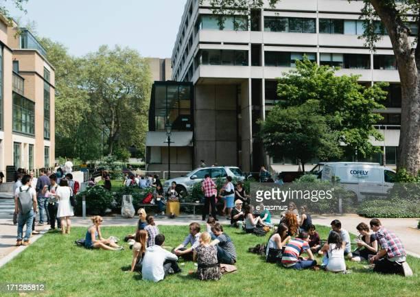 campus da universidade - courtyard - fotografias e filmes do acervo
