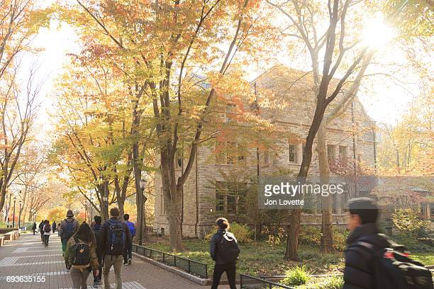 university campus with crowd of students - ivy league university stock photos and pictures