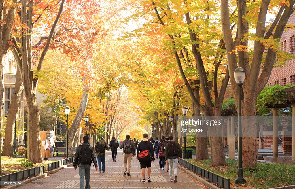 University Campus with Crowd of Students : Stock Photo