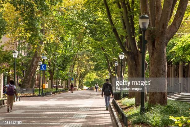 University Campus with few students during pandemic Fall 2020, University of Pennsylvania, Philadelphia, USA.