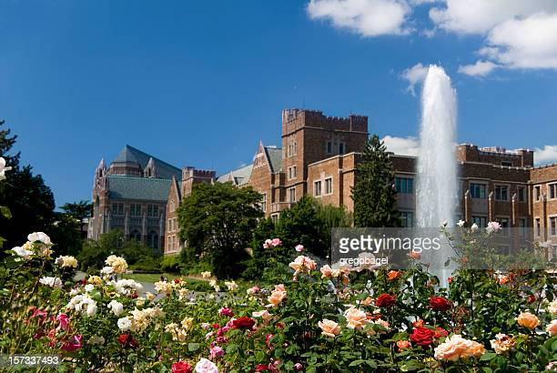 university fountain - university of washington stock pictures, royalty-free photos & images