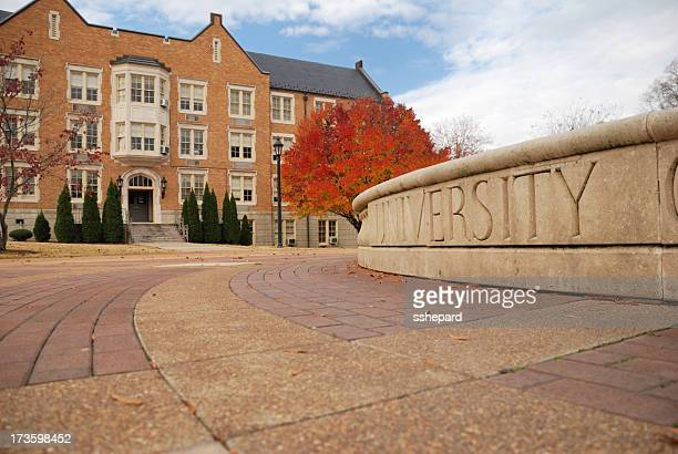 university in autumn - academy stock pictures, royalty-free photos & images