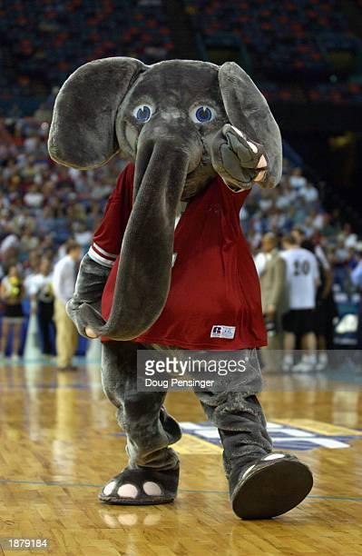 University of Alabama Crimson Tide mascot Big Al entertains the audience during an intermission in the SEC Men's Basketball Tournament against the...