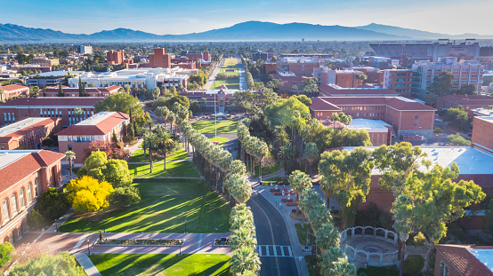 university of arizona - gettyimageskorea