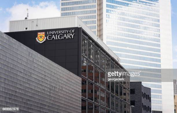 university of calgary architecture - calgary alberta stock pictures, royalty-free photos & images