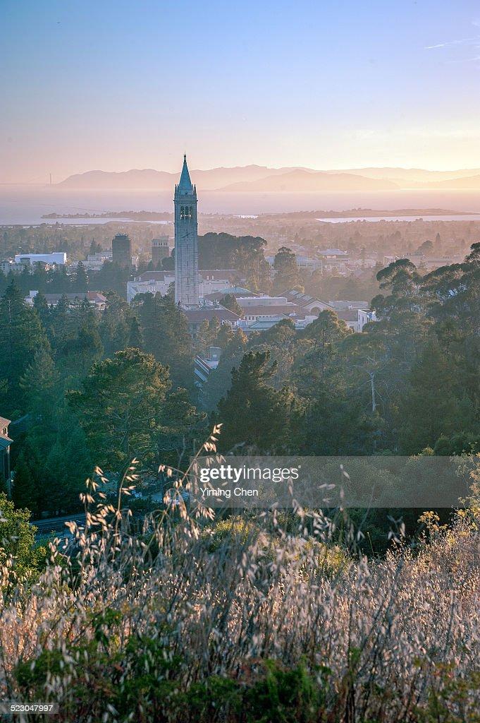University of California, Berkeley : Stock Photo
