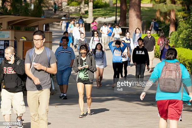universidade da califórnia, los angeles - universidade da califórnia los angeles imagens e fotografias de stock