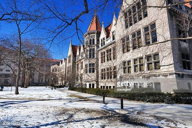 シカゴ大学 四角形 冬 - シカゴ大学 ストックフォトと画像