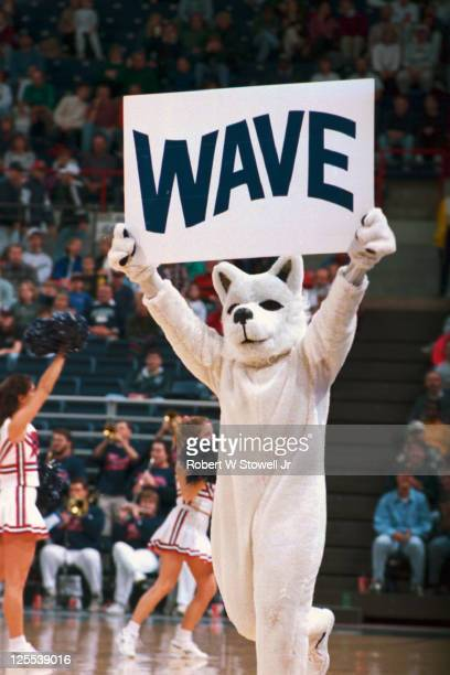 University of Connecticut Huskies mascot Jonathan holds up a sign that reads 'WAVE' while prompting the crowd to cheer during a basketball game...