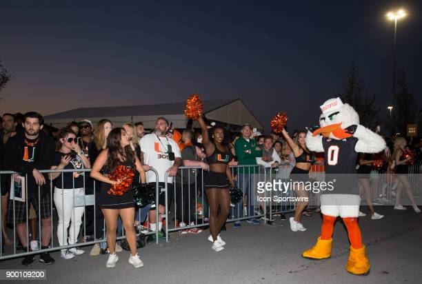 University of Miami Hurricanes Mascot Sebastian the Ibis as the Hurricanes compete against the University of Wisconsin Badgers during the Capital One...
