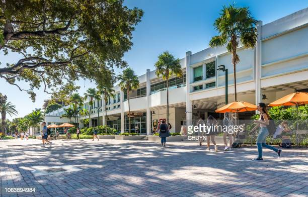 university of miami - coral gables stock pictures, royalty-free photos & images