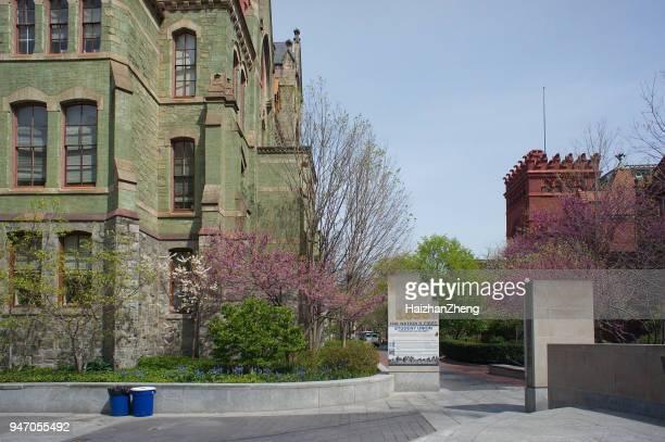 ペンシルベニア大学のキャンパス - ペンシルベニア大学 ストックフォトと画像