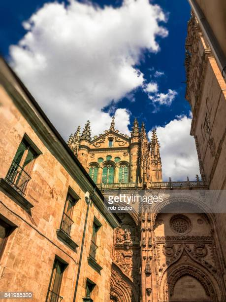 university of salamanca - rob castro stock pictures, royalty-free photos & images