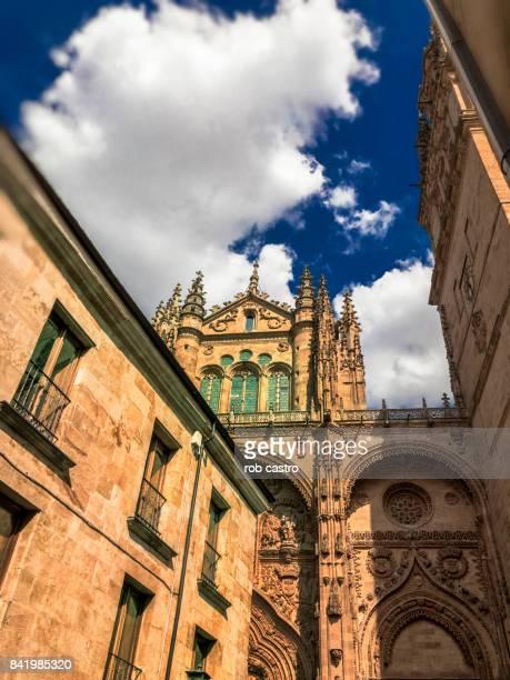 university of salamanca - salamanca stock pictures, royalty-free photos & images