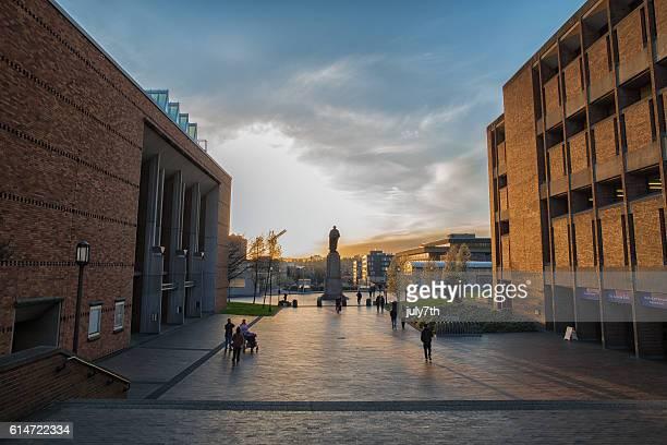 university of washington campus at the sunset - university of washington stock pictures, royalty-free photos & images