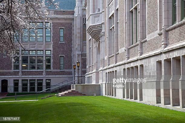 ワシントン大学キャンパス - ワシントン大学 ストックフォトと画像