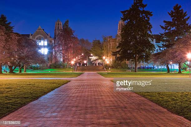 ワシントン大学クワッド夜 - ワシントン大学 ストックフォトと画像