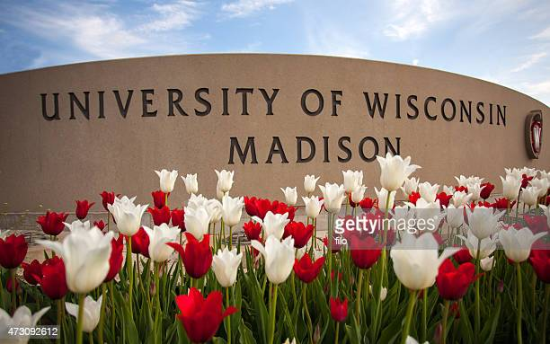 university of wisconsin madison sign - madison wisconsin stock pictures, royalty-free photos & images