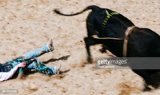 University rodeo young bull rider hits the dirt