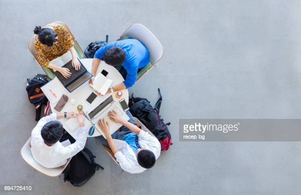 university students studying in a group - studentessa foto e immagini stock