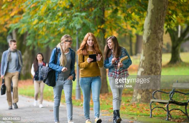 university students walking in campus - campus stock photos and pictures