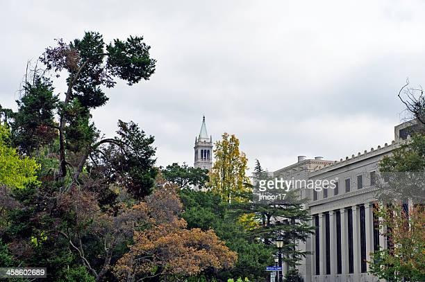 University Views