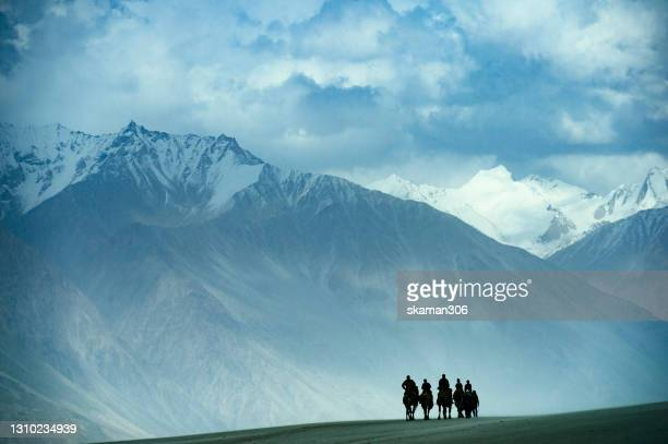 unknow camel caravans riding at nubra valley desert  with himalayas mountain range ladakh india - india stock pictures, royalty-free photos & images