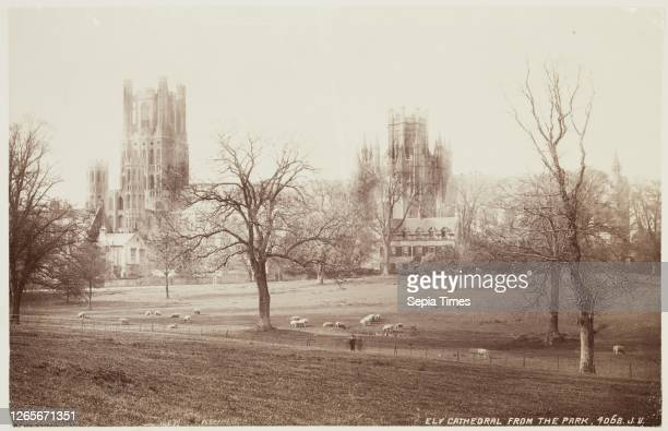 Unknown , James Valentine, Scottish, 1815 - 1879, Ely Cathedral from the Park, between 1870 and 1880, albumen print from collodion on glass negative,...