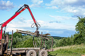 unloading tree with manipulator forest felling
