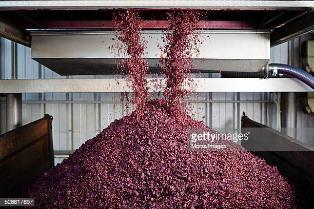 unloading grape skin - viniculture stock pictures, royalty-free photos & images