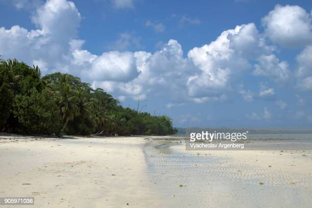 unnamed tropical beach on the east side of havelock island, andamans, india - argenberg fotografías e imágenes de stock