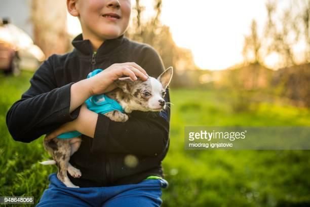 彼の子犬を抱いて認識できない白人少年 - イヌ科 ストックフォトと画像