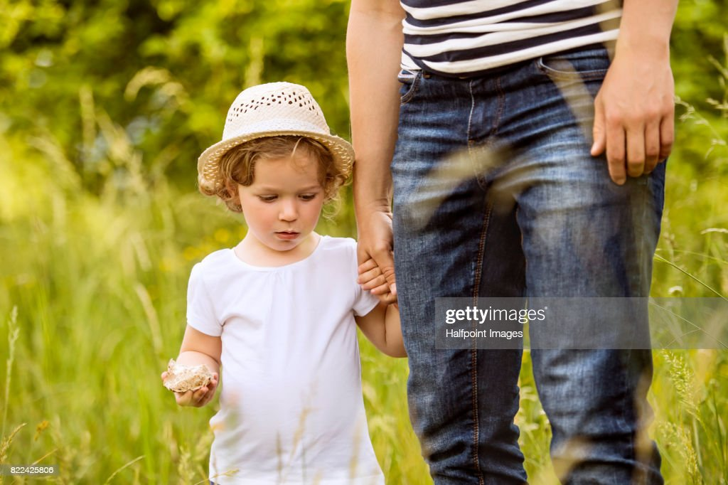 Unrecognizable father with little daughter in sunny summer nature. : Stock Photo