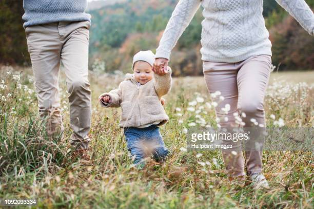 unrecognizable grandparents walking outdoors with toddler granddaughter in nature, holding hands. - granddaughter stock photos and pictures
