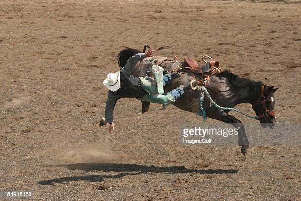 Unrecognizable Male Cowoby Getting Bucked Off A Horse At Rodeo