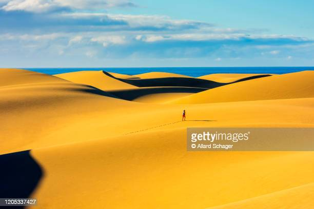 unrecognizable person jogging in maspalomas sand dunes gran canaria spain - grand canary stock pictures, royalty-free photos & images