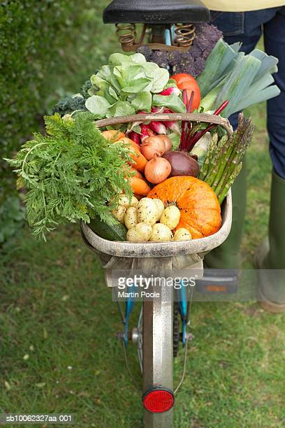 Unrecognizable person standing at bike with basket of assorted vegetables, low section