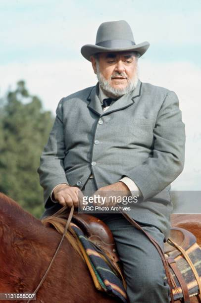 Guest star appearing in the Walt Disney Television via Getty Images tv series 'Alias Smith and Jones'